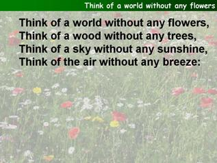 Think of a world without any flowers